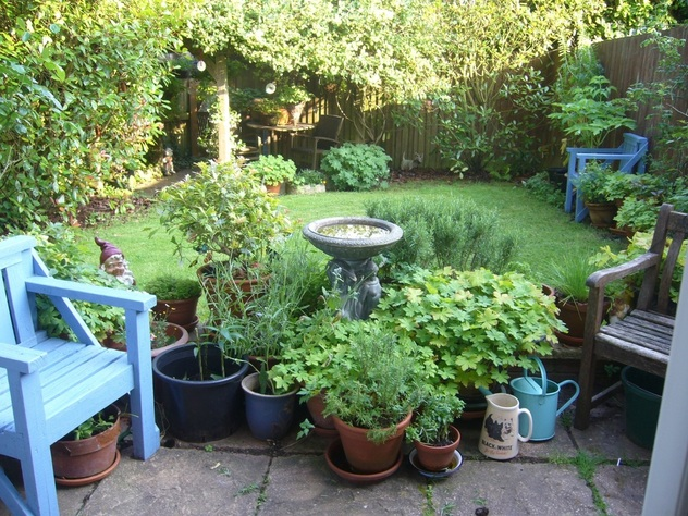the small english garden by dr dinah parums home